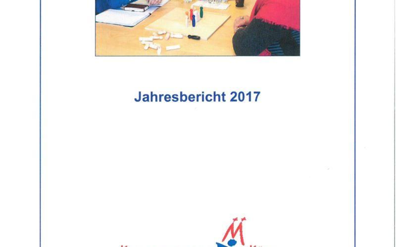 Titelbild Jahresbericht 2017