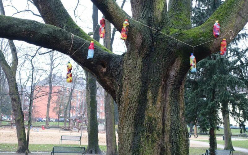 Baumschmuck im Park